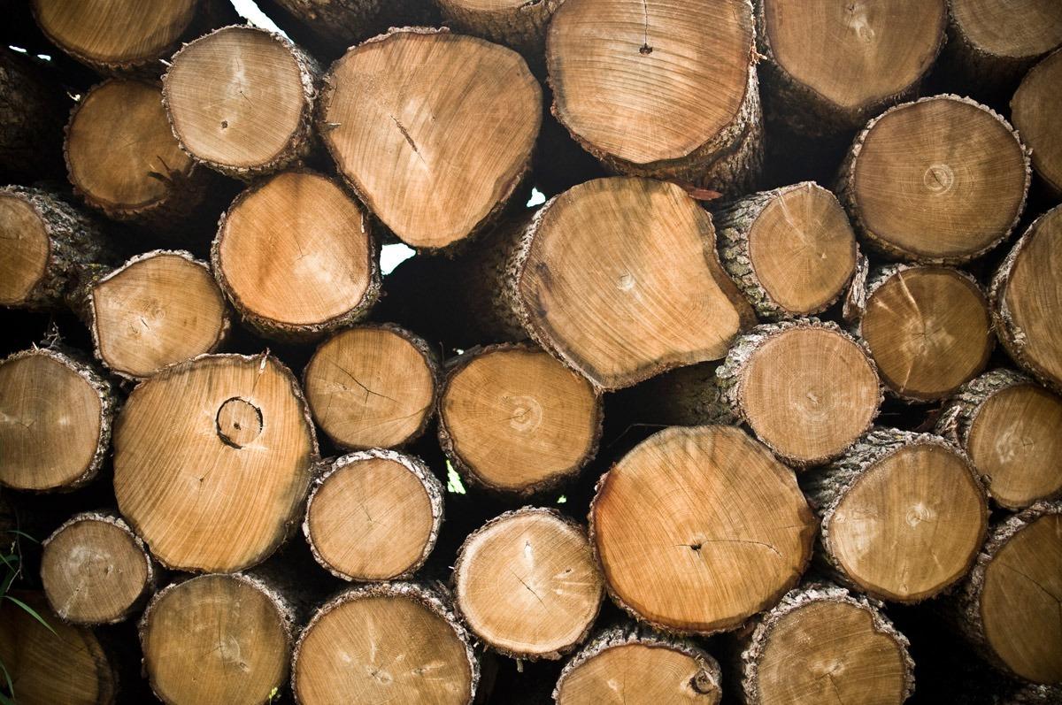 كمترين نرخ حمل چوب و الوار و نئوپان و mdf