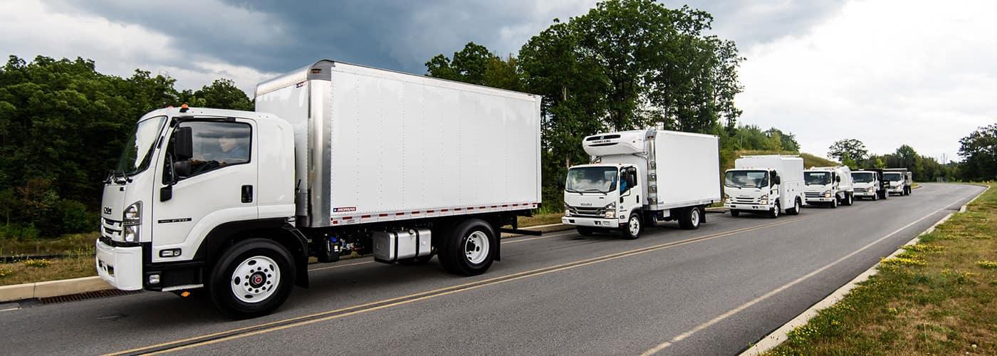 Isuzu N Series Diesel trucks