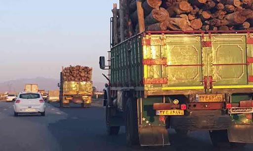 حمل چوب با کامیون به نوشهر